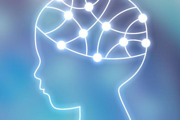Predicciones de la Inteligencia
